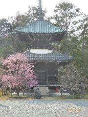 11清凉寺