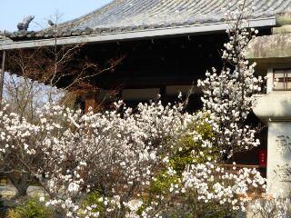 12清凉寺